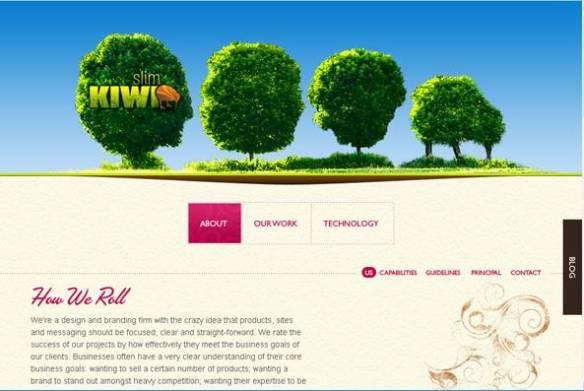 Slim Kiwi