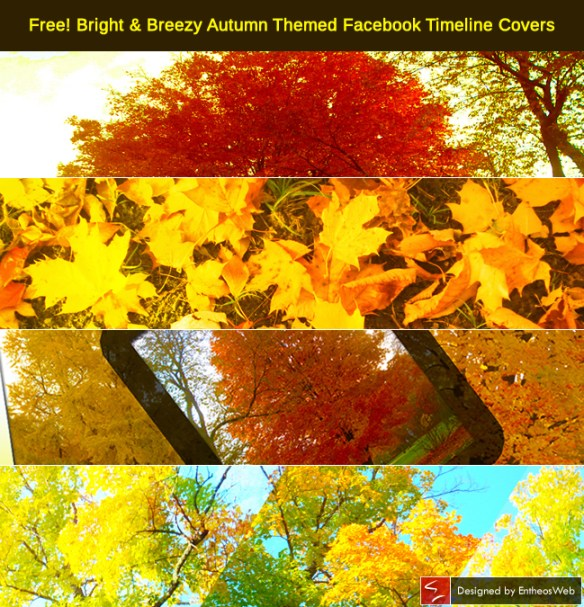Free! Bright & Breezy Autumn Themed Facebook Timeline Covers