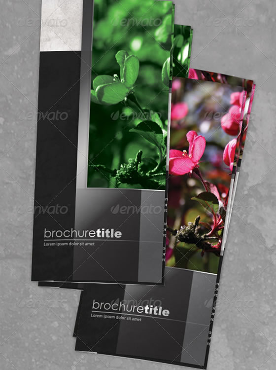 Brochure 4B