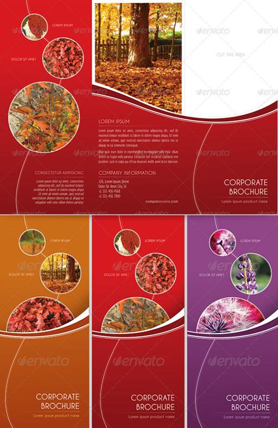 Multicolor Trifold Brochure