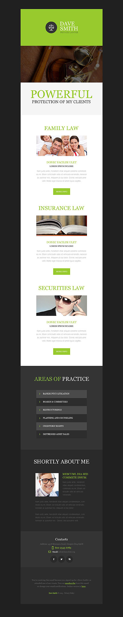 Template 53195 - Lawyer Responsive Newsletter Template – MailChimp Ready, Campaign Monitor Ready