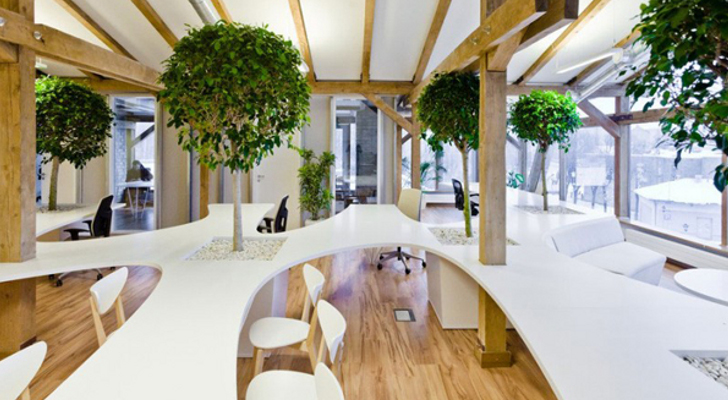 Office-Building-Has-Indoor-Forest-of-Trees-Potted-Plants