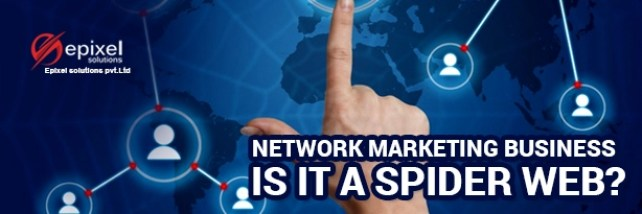 Network marketing business - Is it a spider web?