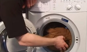 How To Fix A Washing Machine That Won T Spin Espares