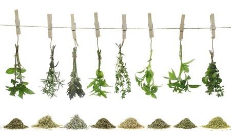 9 hierbas que te ayudaran a perder peso