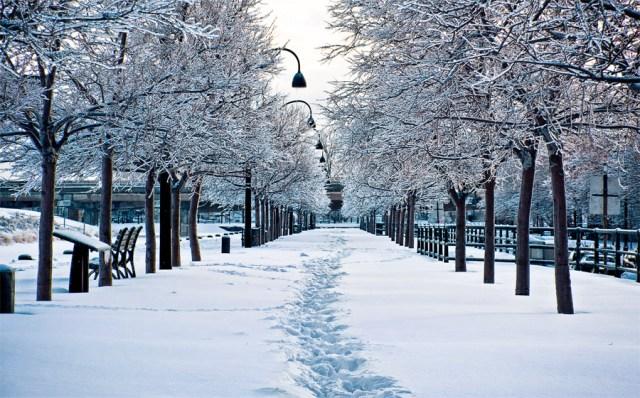 ethan holmes snow montreal