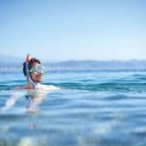 Zin in de zee! Ontdek de 9 leukste uitjes – onderwater