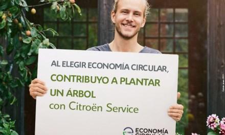 Planta un árbol con la economía circular de Citroën Service