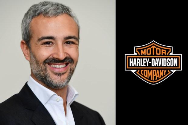 Francesco Vanni Harley Davidson