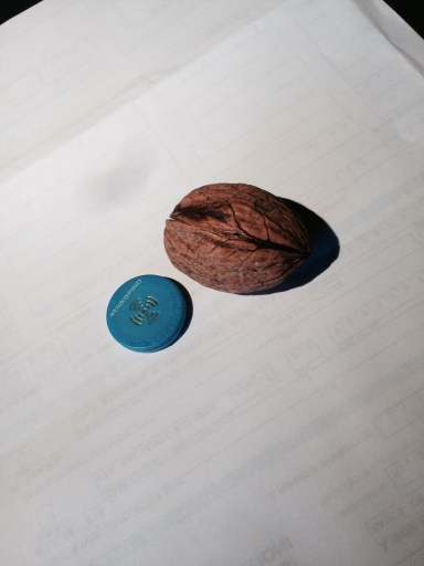 Ibeacon with walnut