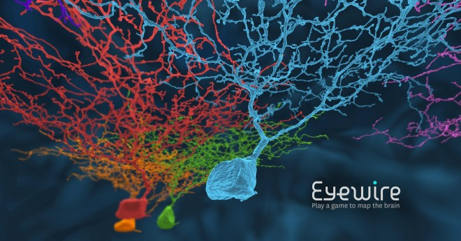 eyewire, game to map the brain, neuroscience, gaming, citizen science, neurons, neuroscience, brain