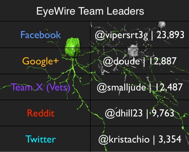 Team Leaders 2.19