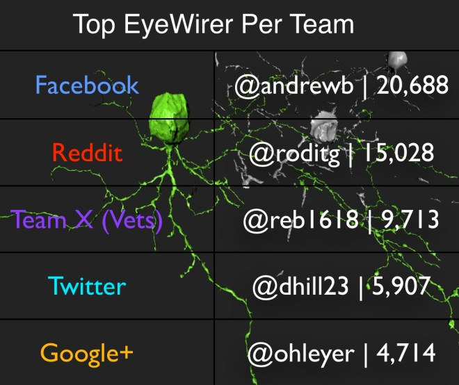 Top EyeWirers Games Day 2