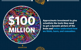 whitehouse obama brain initiative infographic