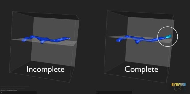 complete vs incomplete cube, EyeWire tutorial, EyeWire training, EyeWire