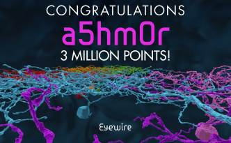 a5hm0r 3 million points congrats eyewire