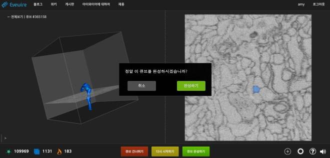 Korean EyeWire