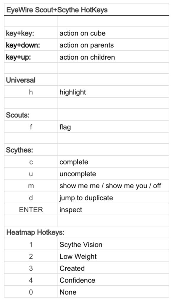 EyeWire keyboard Shortcuts Image