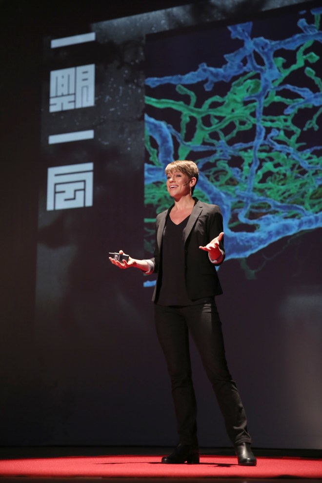 Amy Robinson, Amy Sterling, Amy Robinson Sterling, TEDxKyoto, neuroscience, Neo, Neo Brain Game, Ichi Go Ichi I, TEDx, Neo brain game, brain game