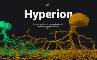 hyperion, ganglion cell, eyewire, citizen science, cit sci, sciart, Greek mythology, Titan