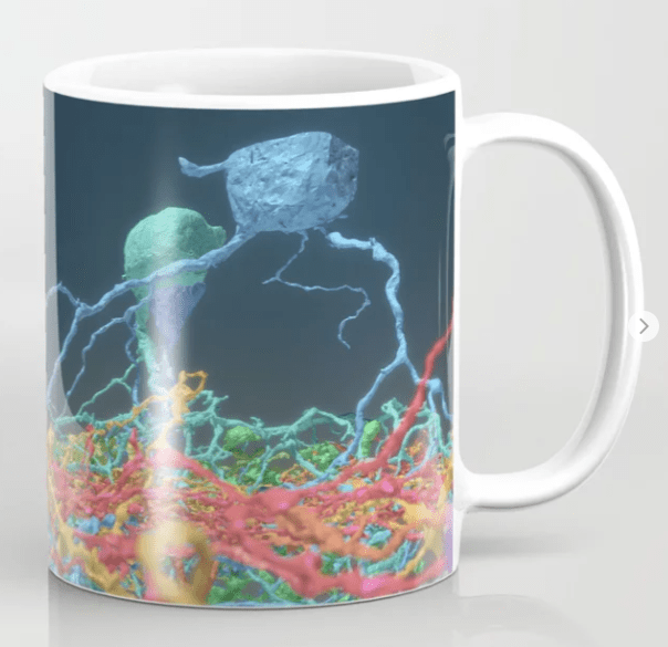 swag, for science, eyewire mug, eyewire, citizen science, brain swag, sciart, science art, for science, brain, art, mug, neuron mug