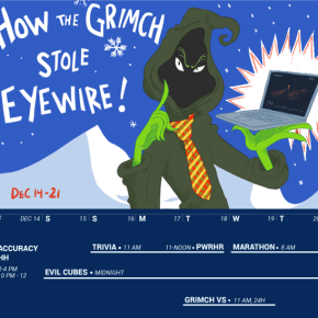 the grinch, grinch, eyewire, christmas, holiday, competition, citizen science, sciart