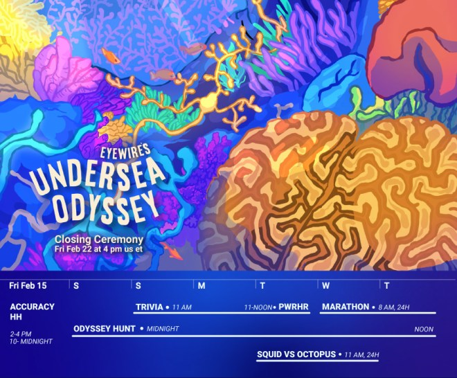 Eyewire, citizen science, Undersea Odyssey, marine biology, Nurro, coral reef, calendar, game, neuroscience, art