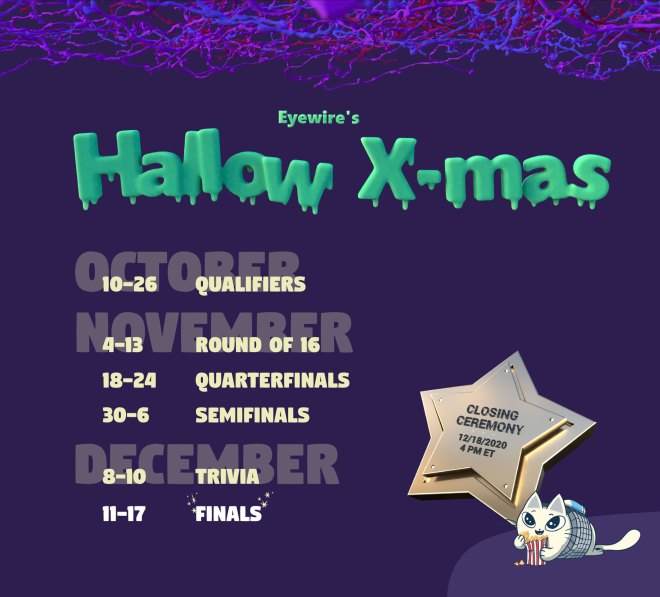 Hallow-Xmas, Eyewire, citizen science, calendar, Nurro, Halloween, Xmas