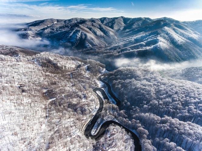 Iarna in padurea Bogata - Calin Stan
