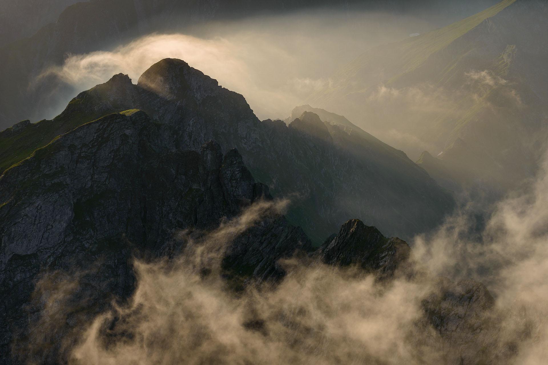 Curs online – Compoziția în fotografia de natură cu Dan Dinu