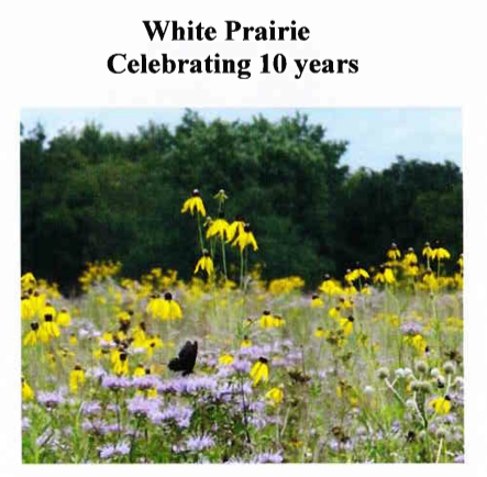 White Prairie celebrating ten years for blog