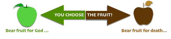 green apple brown apple you choose the fruit
