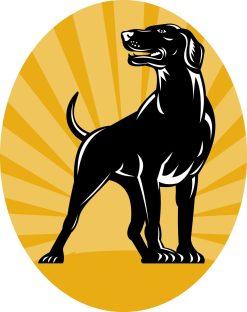 pointer-dog-with-sunburst-retro-style_MkZIWdLu