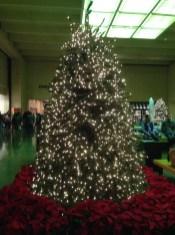 Northpark Center Christmas 2013