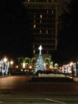 att plaza tree 12-4-2013 (10)
