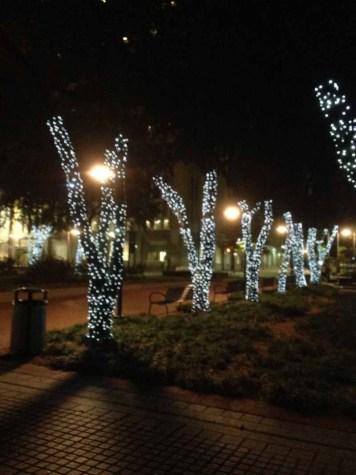 att plaza tree 12-4-2013 (7)