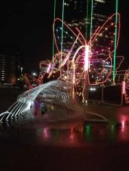 butterfly light display Dallas 12-4-2013-03