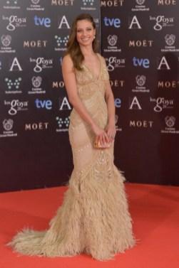 Goya Cinema Awards 2014 - Red Carpet