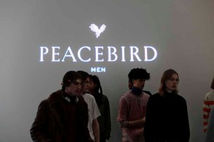 Peacebird Fall 2019