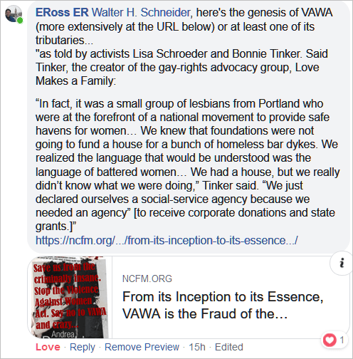VAWA is the Fraud of the Millennia