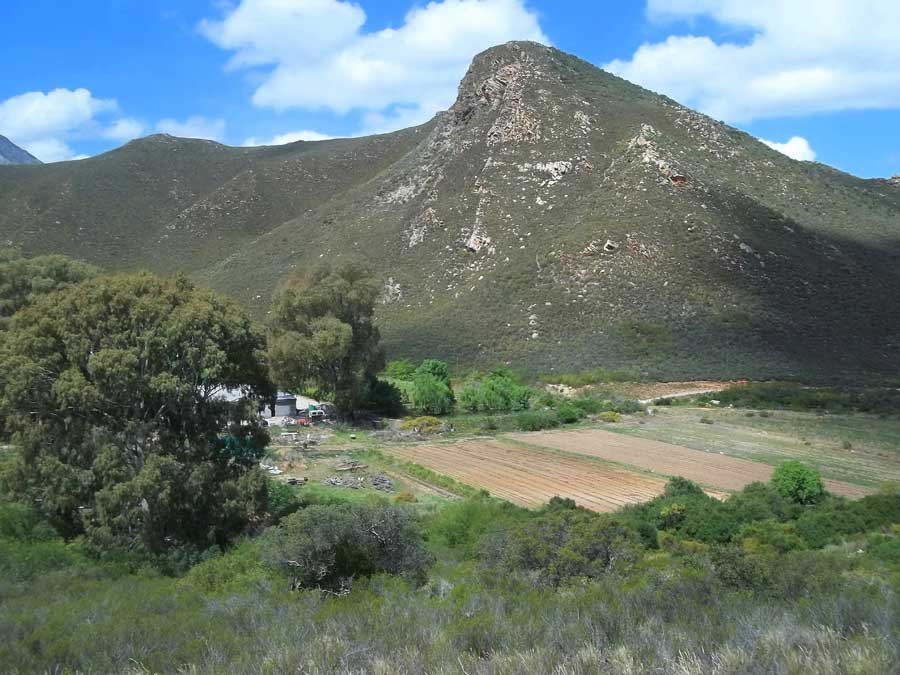 How keeping maps and field diaries in one place has given Tierhoek Organic Farm a new sense of unity
