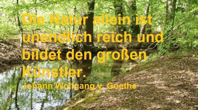 Die Natur allein ist unendlich reich und bildet den großen Künstler.