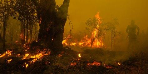 Waldbrand Indonesien