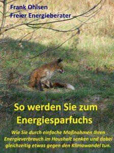 Energiesparfuchs