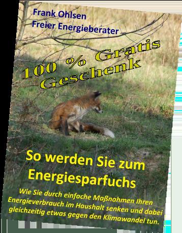 Werde zum Energiesparfuchs