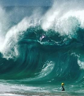 Clark Little Film 'Shorebreak' Hits the Beaches