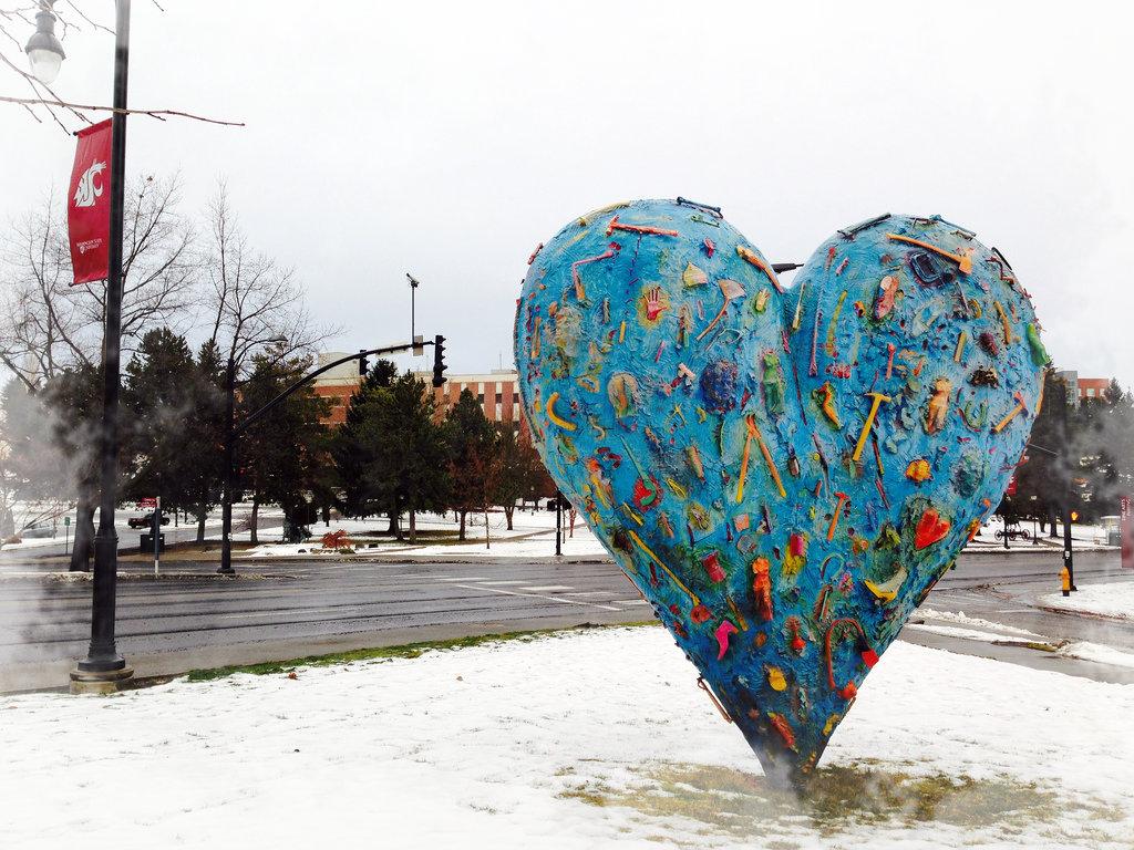 technicolor heart  washington state university