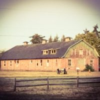 A Barn at Fort Steilacoom Park