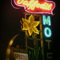 Neat Vintage Sign at the Daffodil Motel