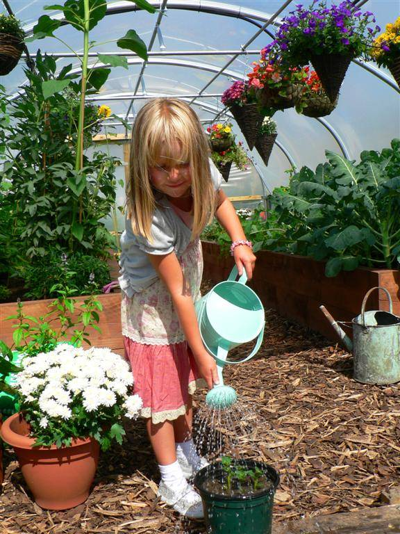 June polytunnel growing tips polytunnel gardening for Gardening tips colorado